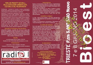Pieghevole2014-1