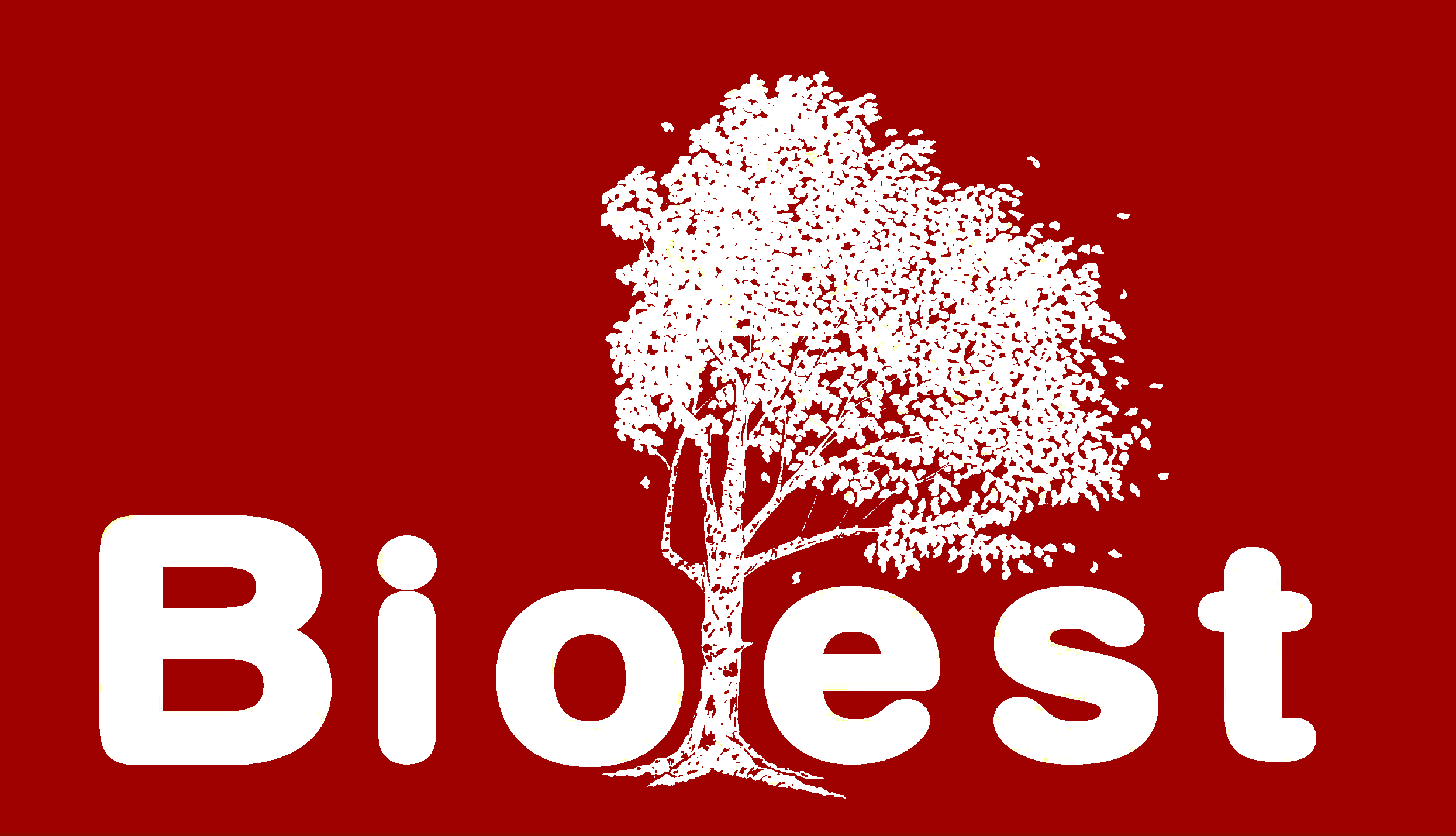 Bioest 2021 - Si comincia